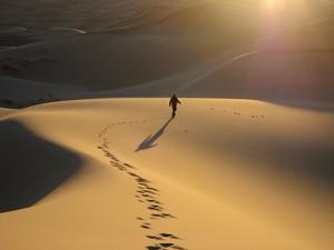 desert-trek