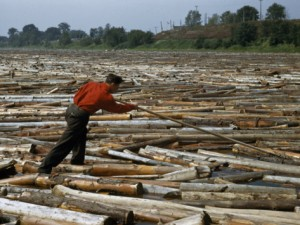 jack-fletcher-lumberjack-uses-a-pike-pole-to-prevent-a-massive-log-jam-on-a-river_i-G-38-3883-8NYJF00Z