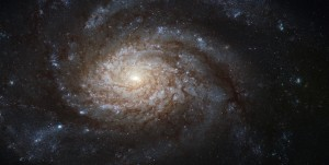 NGC_3810_(captured_by_the_Hubble_Space_Telescope)